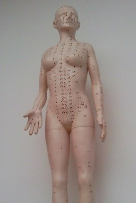 Meridian lines acupuncture